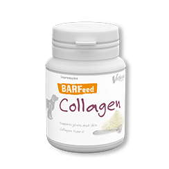 BARFeed Collagen